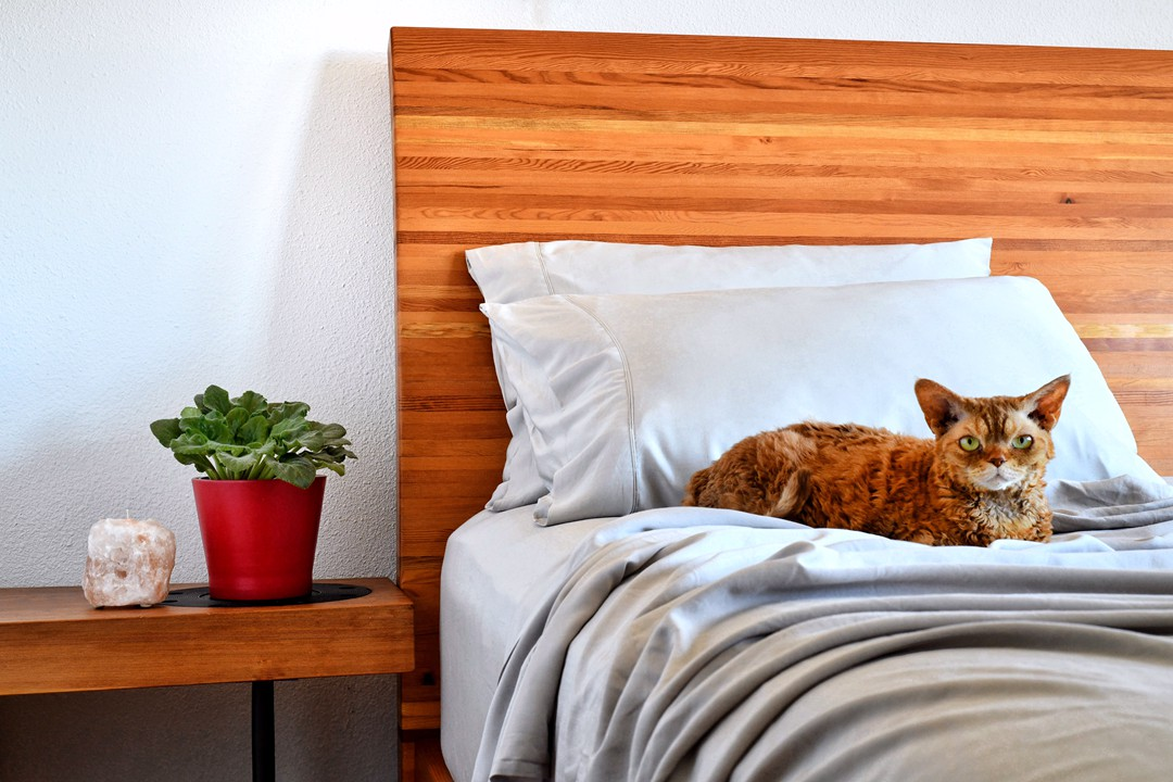 5 Guides for Buying Bamboo Sheets and Pillow Cases