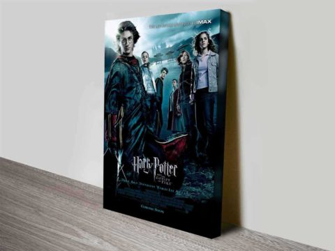 Harry-Potter-and-the-Goblet-of-Fire-s-Wall-480x360